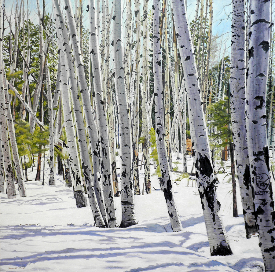 "Daniel Fishback, Florissant, MO. Winter Aspens. 2012. Oil on Canvas, 36""x36"". $2,000."