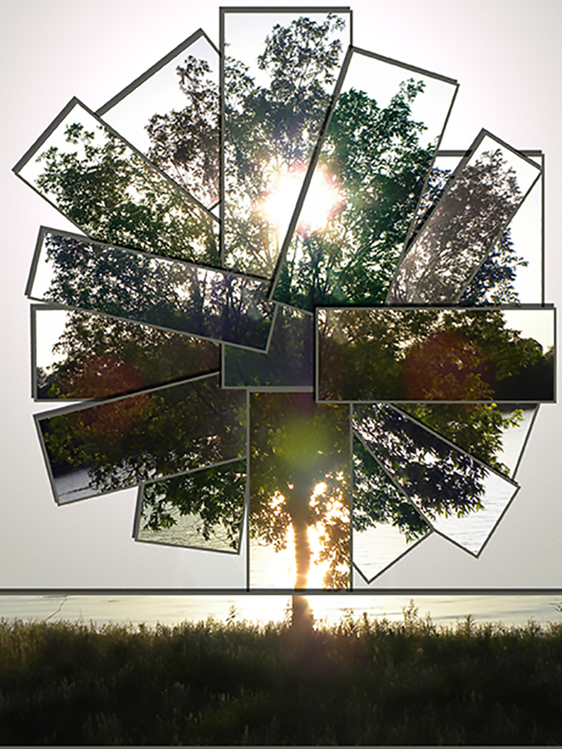 "Jennifer Sarti, St. Louis, MO. ""Tree of Life."" 2014. Digital Art, 16""x20"". $140	."